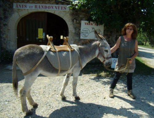 Les Gorges de l'Ardècheen randonnée avec un âne